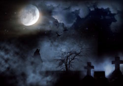 Cemetery under full moon