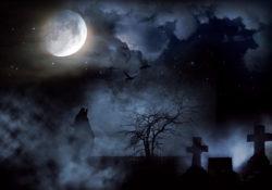 Cemetery under full moon
